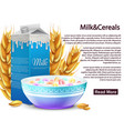 milk and cereals healthy breakfast vector image