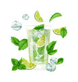 mojito cocktail summer drink with ice lime and vector image