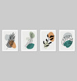 set botanical wall art vector image