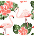 bright crimson camelia flowers exotic pink vector image vector image