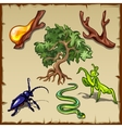 Plants insects and all sorts of other creatures vector image