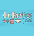 women menstrual hygiene objects set line art vector image