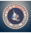 SPA theme with drop vector image
