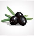 cartoon of black olives vector image