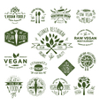 15 Vegetarian Foods Badges vector image vector image