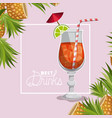best drink fresh cocktail vector image