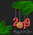 handball ball and 2019 on a christmas tree branch vector image