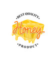honey flowing from honeycomb label design vector image vector image