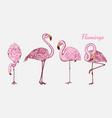 pink flamingo hand drawn birds sketch vector image vector image