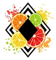 Print with citrus fruits slices Mix of lemon lime vector image vector image