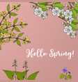 spring blossom card with apple branch and vector image