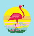 sunset and pink flamingo vector image