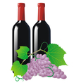 vine and wine vector image vector image
