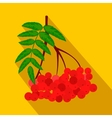 Branch of red rowan flat icon vector image vector image