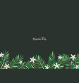 coconut palm leaf and white flower frame vector image