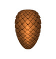 pine cone isolated on white background decoration vector image