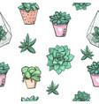 seamless pattern with cute hand drawn succulents vector image vector image