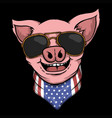 smile pig head vector image