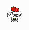 tomato vegetable logo round linear vector image