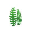 underwater seaweed in flat style vector image vector image
