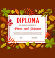 education certificate with autumn leaves diploma vector image vector image