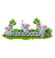 elephant enjoy garden vector image vector image