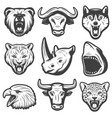 vintage wild animals set vector image vector image