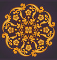 beautiful round ornamental element for design vector image