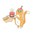 cat has birthday party celebrate with cake vector image vector image