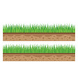 grass ground texture vector image
