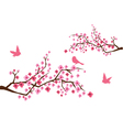 sacura branches with birds vector image vector image