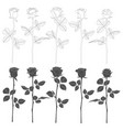 set of black and white with roses vector image vector image