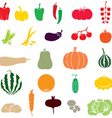 vegetables color vector image vector image