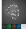 X-rays of the skull icon vector image vector image