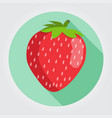 red strawberry fruit on a white space with shadows vector image