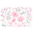 set watercolor elements roses leaves vector image