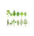 green leaves set organic plant elements vector image