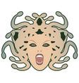 head medusa mythological creature with human vector image