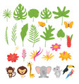 jungle leaves flowers and animals vector image