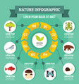 nature infographic concept flat style vector image