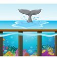 Ocean scene with dolphin tail vector image vector image