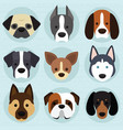 set cute dogs vector image