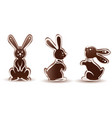 set sweet chocolate bunny silhouette dessert with vector image