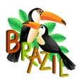 Two colorful toucans sitting on a branch Brazil vector image