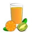 fresh orange kiwi juice vector image vector image