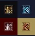letter k decorative logo vector image vector image