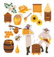 beekeeping set flat healthy vector image