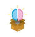 box with creative bulb brain inside vector image vector image