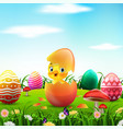 cute easter duckling in broken easter egg vector image