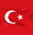 flag republic turkey vector image